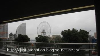 IMG_9979.jpg